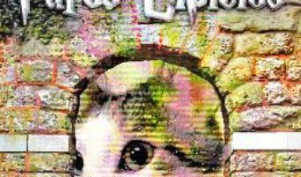 Download  Jurnalul lui Pufos Lipicios – Ana Sorina Corneanu PDF Online