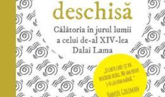 Download  Calea deschisa – Pico Iyer PDF Online