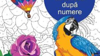 Download  Relaxare: Coloreaza dupa numere PDF Online