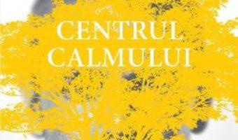Cartea Centrul calmului – Steve Taylor (download, pret, reducere)