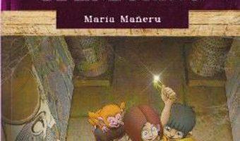 Download  Misterul papirusului regal de la Torino – Maria Maneru PDF Online