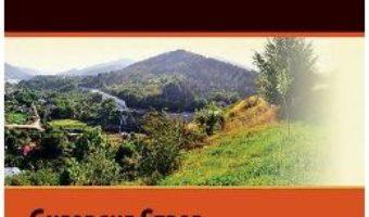 Download  Cina in Valea Sarii – Gheorghe Stroe PDF Online