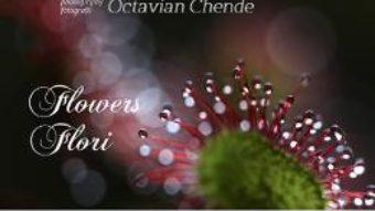 Download  Flowers. Flori- Octavian Chende PDF Online