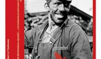 Download  Porumbel a l'italienne – Alain Berenboom PDF Online