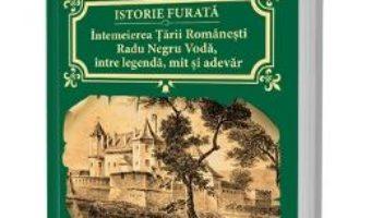 Download  Istorie furata. Intemeierea Tarii Romanesti – Cornel Birsan PDF Online