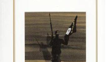 Download  Da'Ish sau Jihadul de langa noi – Dumitru Chican PDF Online