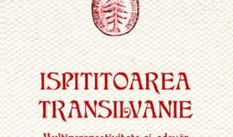 Download  Ispititoarea Transilvanie – Ioan Bolovan, Sorina Paula Bolovan PDF Online