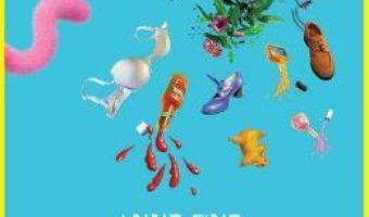 Download  Doamna Doubtfire – Anne Fine PDF Online