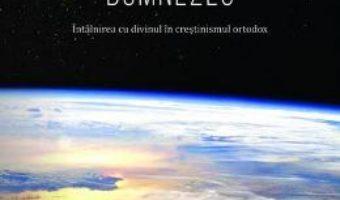 Download  Sa facem cunostinta cu Dumnezeu – Andrew Stephen Damick PDF Online