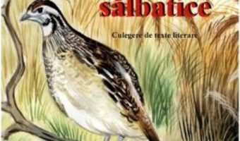 Download  Despre pasarile salbatice. Culegere de texte literare PDF Online
