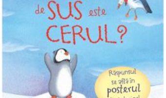 Download  Cat de sus este cerul? – Anna Milbourne, Serena Riglietti PDF Online