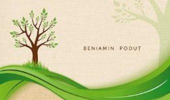 Download Transformati de puterea Cuvantului – Beniamin Podut PDF Online