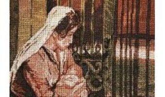 Cartea Remedii contra tristetii – Vasile Nechita (download, pret, reducere)