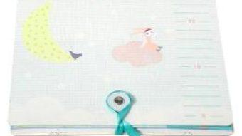 Download Baby Art – I'm not a baby! Grila de masura cu Sticker pentru marcaj al cresterii PDF Online