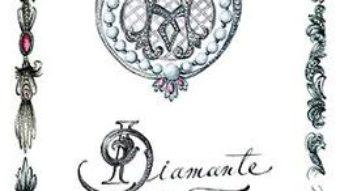 Download Diamante si foc – Rachelle Bergstein PDF Online