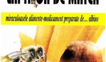 Cartea Miere, propolis, laptisor de matca – D.E. Du Brin (download, pret, reducere)