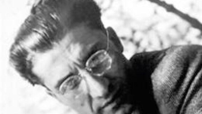 Pret Carte Pavese, omul jignit – Vianu Muresan PDF Online