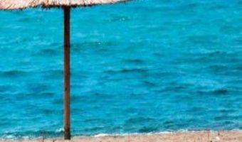 Pret Carte Plaja – Tudor Calin Zarojanu PDF Online