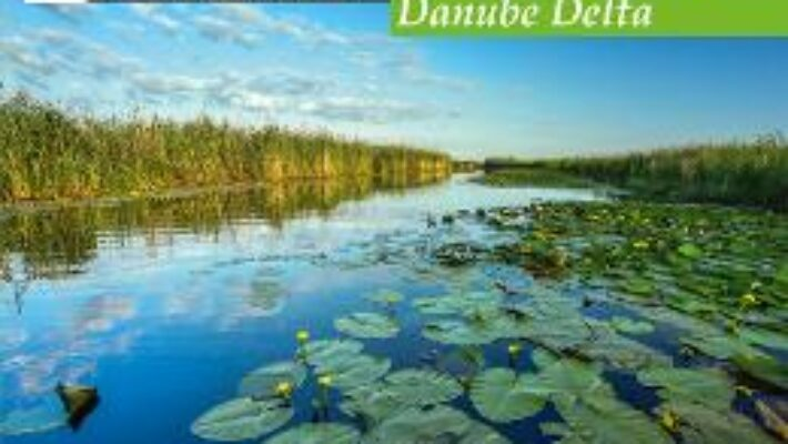 Pret Carte Calator prin tara mea. Delta Dunarii – Mariana Pascaru, Florin Andreescu PDF Online
