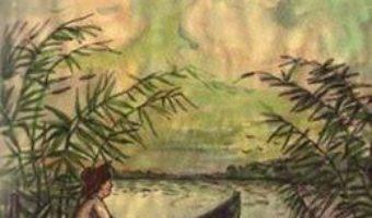 Cartea Alegerea ta! – Brandusa Vranceanu (download, pret, reducere)