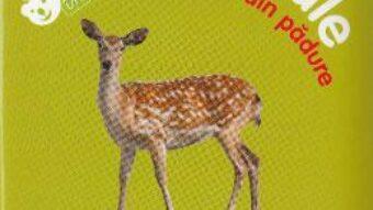 Pret Carte Bebe invata – Animale din padure PDF Online