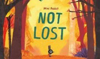 Cartea Mini Rabbit Not Lost – John Bond (download, pret, reducere)