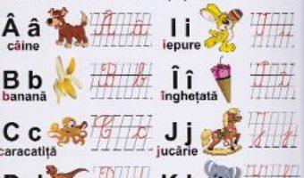 Cartea Plansa – Alfabetul istetilor (download, pret, reducere)