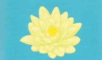 Cartea Secretul secretelor – Osho (download, pret, reducere)