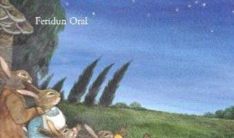 Cartea Bunica atinge stelele – Brigitte Weninger, Feridun Oral (download, pret, reducere)