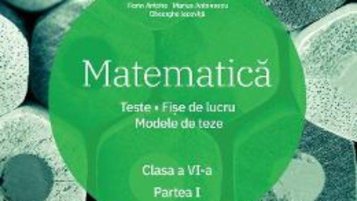 Cartea Matematica – Clasa 6. Partea 1 – Teste. Fise de lucru. Modele de teze – Florin Antohe (download, pret, reducere)