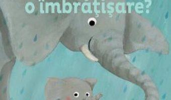 Cartea Prea mic sau prea mare pentru o imbratisare? – Bonnie Grubman, Suzanne Diederen (download, pret, reducere)