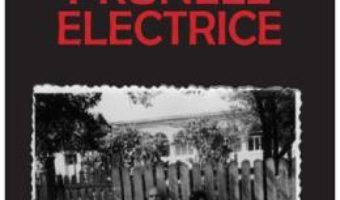 Cartea Prunele electrice – Dumitru Ungureanu (download, pret, reducere)