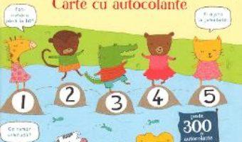 Cartea Ma pregatesc de scoala. Numere. Carte cu autocolante (download, pret, reducere)
