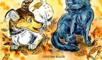 Cartea Intamplari cu talc. Despre cearta – Cristina Bujor (download, pret, reducere)