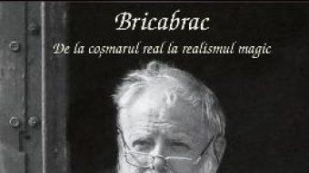 Pret Carte Bricabrac. De la cosmarul real la realismul magic – Lucian Pintilie PDF Online
