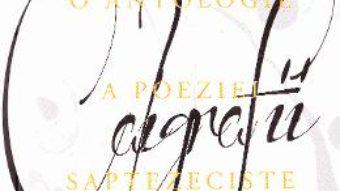 Carte Caligrafii – Lucia Turcanu PDF Online