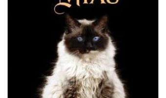 Carte Pisica lui Dalai Lama si puterea lui miau – David Michie PDF Online