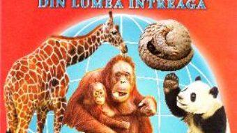 Carte Animale salbatice din intreaga lume – 32 Cartonase – Silvia Ursache PDF Online