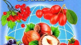 Carte Fructe de padure – Cartonase – Silvia Ursache PDF Online