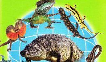 Carte Soparle, crocodili, salamandre, tritoni – Cartonase – Silvia Ursache PDF Online