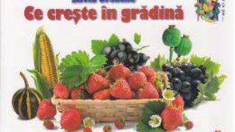 Carte Ce creste in gradina – Silvia Ursache PDF Online