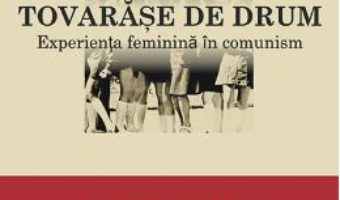 Carte Tovarase de drum – Radu Pavel Gheo, Dan Lungu PDF Online