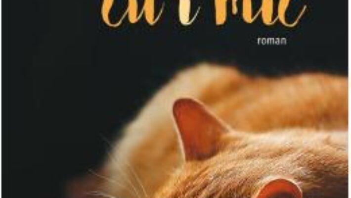 Cartea Iubire cu i mic – Francesc Miralles PDF Online
