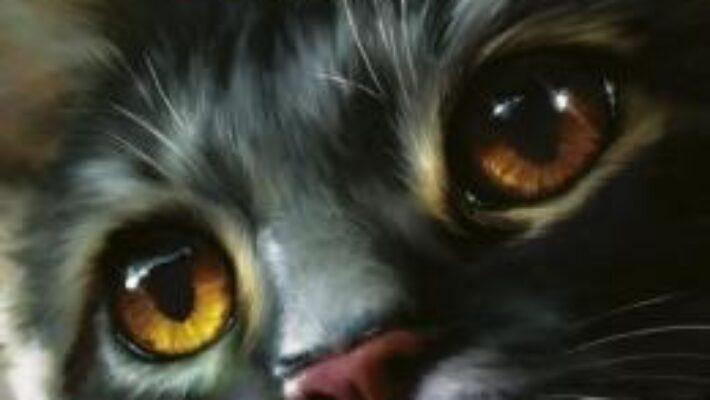 Cartea Pisicile Razboinice Vol. 8: Rasarit de luna – Erin Hunter PDF Online