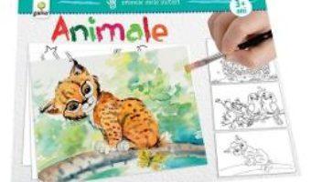 Cartea Primele mele picturi: Animale PDF Online