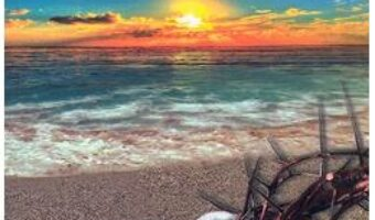 Cartea Abecedand prorociile. Predica de pe cruce – Benone Burtescu PDF Online