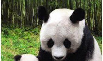 Cartea Legenda uriasilor panda – Liu Xianping (download, pret, reducere)