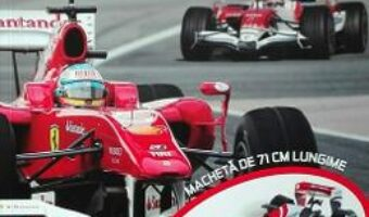 Cartea Construieste-ti un bolid de Formula 1 (download, pret, reducere)