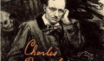 Cartea Jurnale intime – Charles Baudelaire (download, pret, reducere)