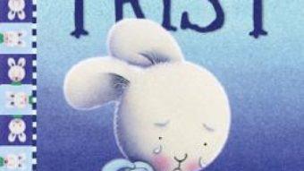 Cartea Cand sunt trist – Trace Moroney (download, pret, reducere)